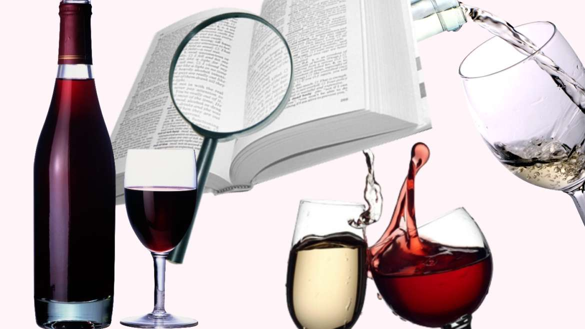 Useful Wine Terms and Wine Tasting Words You Need to Learn