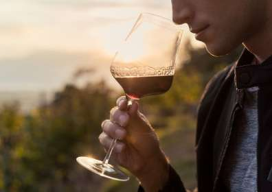 Does Wine Expire or Go Bad?
